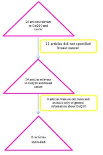 Delay in breast cancer a review of the literature